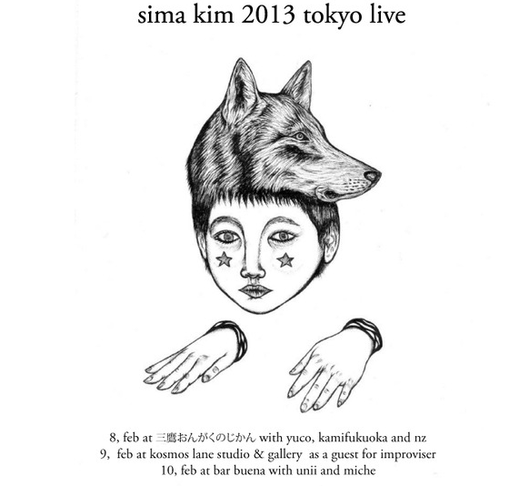 20130215-simakim