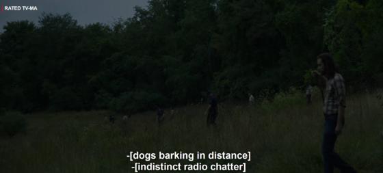 I Keep the Subtitles On at Night